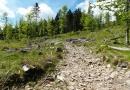 Poledník, jezera Prášilské a Laka 05