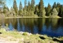 Poledník, jezera Prášilské a Laka 68