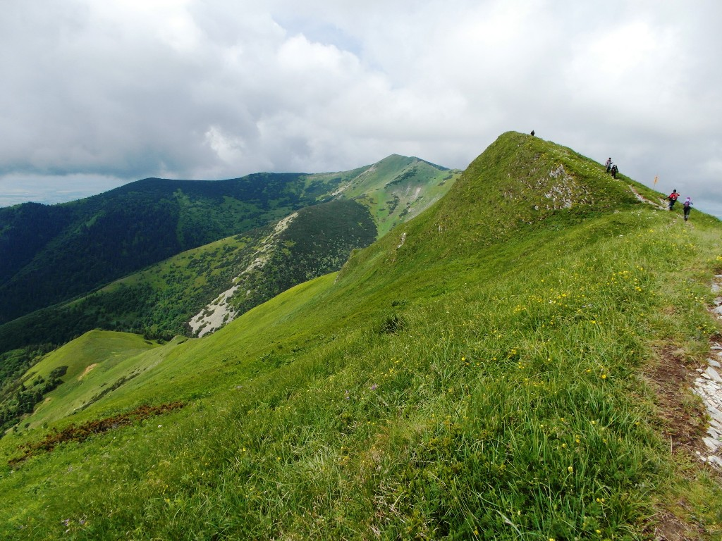 Slovensko 529